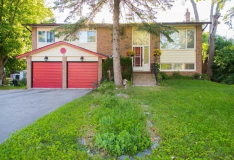 91 Fergus Avenue, Richmond Hill